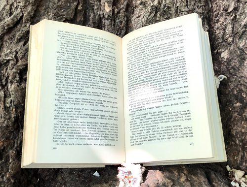 Warum ziehen uns bestimmte Romane in ihren Bann und lassen uns atemlos bis zur letzten Seite lesen? Eine Literatur-Kolumne über Sprachmacht.