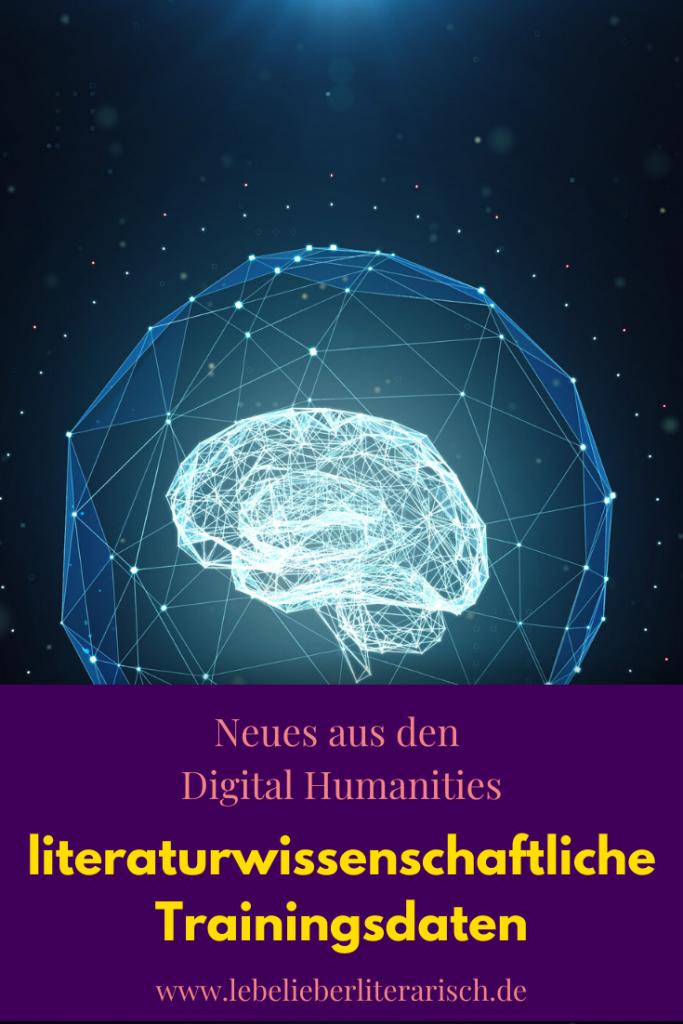 Machine Learning verspricht eine schöne neue Welt für die Literaturwissenschaften, aber wie genau müssen Traingsdaten zusammengesetzt sein, damit du sie literaturwissenschaftlich einsetzen kannst? #Literaturwissenschaft #DigitalHumanities #Bildung #Technik