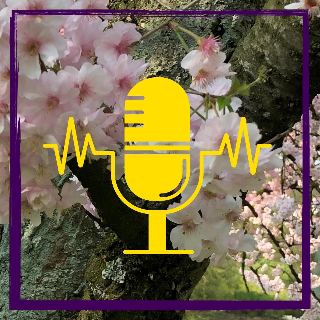 Tutorial: Audio-Datei aufnehmen #digitaleLehre #Podcast #Edutainment
